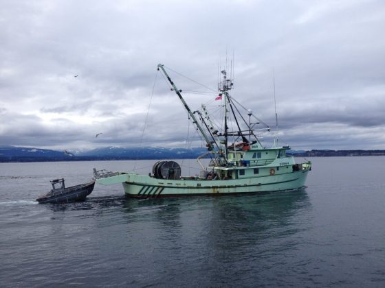 Herring Tour running Tomorrow